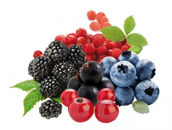 Frozen Fruits & Fruit Purees